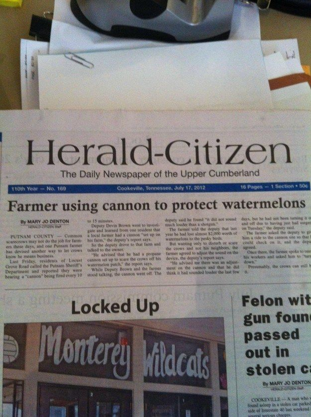 They're burying the lede a bit here, the lede being LOCAL PSYCHOPATH HAS WORKING CANNON AND WILL DEFINITELY SHOOT IT AT YOU. | 18 Local News Stories That Could Only Happen In A Small Town
