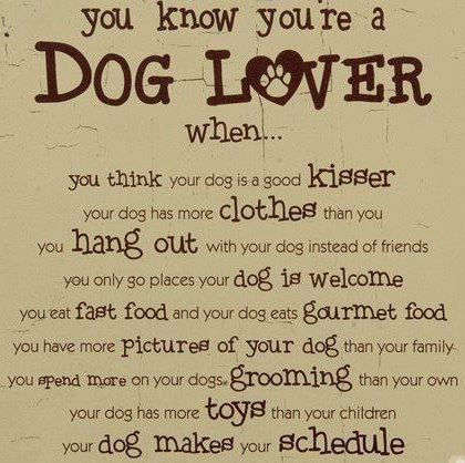 Funny Quotes About Dog Lovers : all true! Puppy love quotes Pinterest A walk, Dr. who and Chang ...