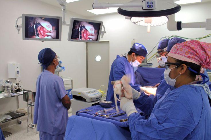 Hospital Regional de Alta Especialidad de Ixtapaluca (HRAEI) realizó con éxito su primer trasplante de riñón - http://plenilunia.com/novedades-medicas/hospital-regional-de-alta-especialidad-de-ixtapaluca-hraei-realizo-con-exito-su-primer-trasplante-de-rinon/42554/