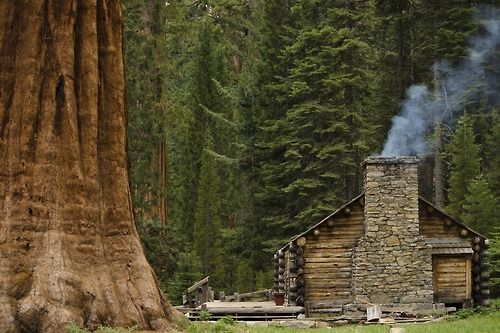 98 best mariposa grove yosemite national park images on for Log cabin sequoia national park