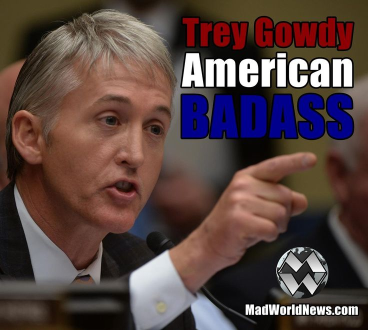 ~~ LOVE TREY GOWDY...we need more people in power to fight for America...just saying...