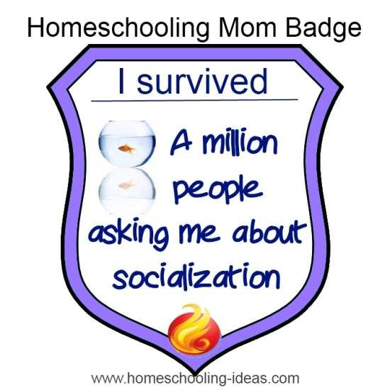 Homeschool socialization - I deserve this badge!
