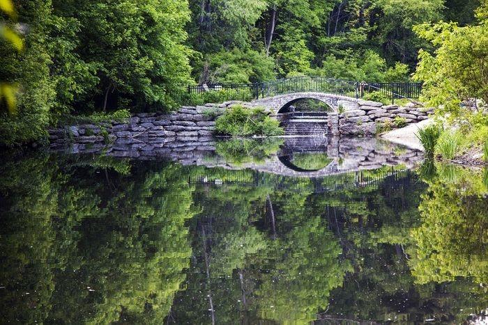hidden pathways through forrests of High Park