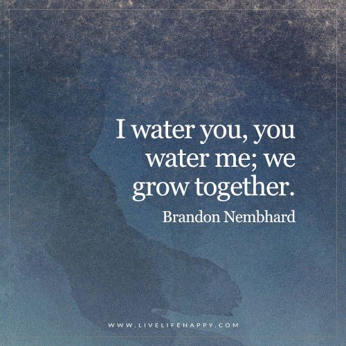 Live Life Happy: I water you, you water me; we grow together. - Brandon Nembhard