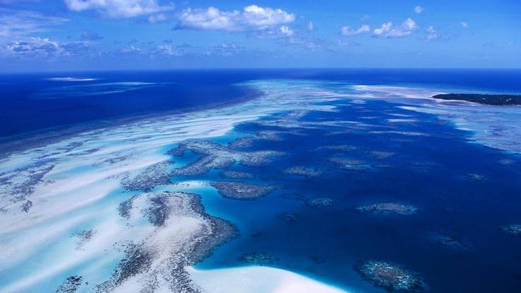 Coral Reef Torres Strait Islands Australia - Travel