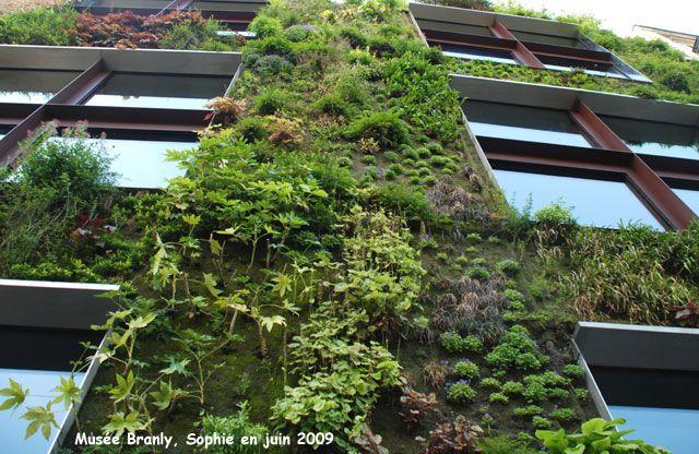 Le mur végétal quai Branly: le projet en quelques mots, sur un site consacré au jardin