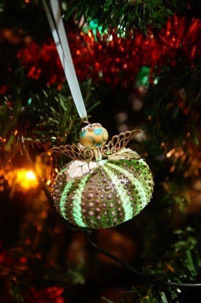 Christmas sea urchin fairy with a xmas light up her butt! Kina shell