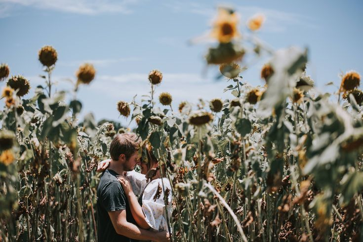 Salt Media - Gold Coast Wedding Photography. He proposed in the Sunflowers