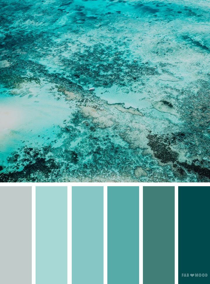 Shades Of Green Ocean Inspired Color Palette Nature