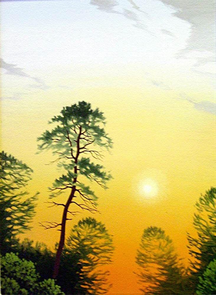 "levkonoe: С.Адаменко. ""Утреннее солнце"" 2008 г."