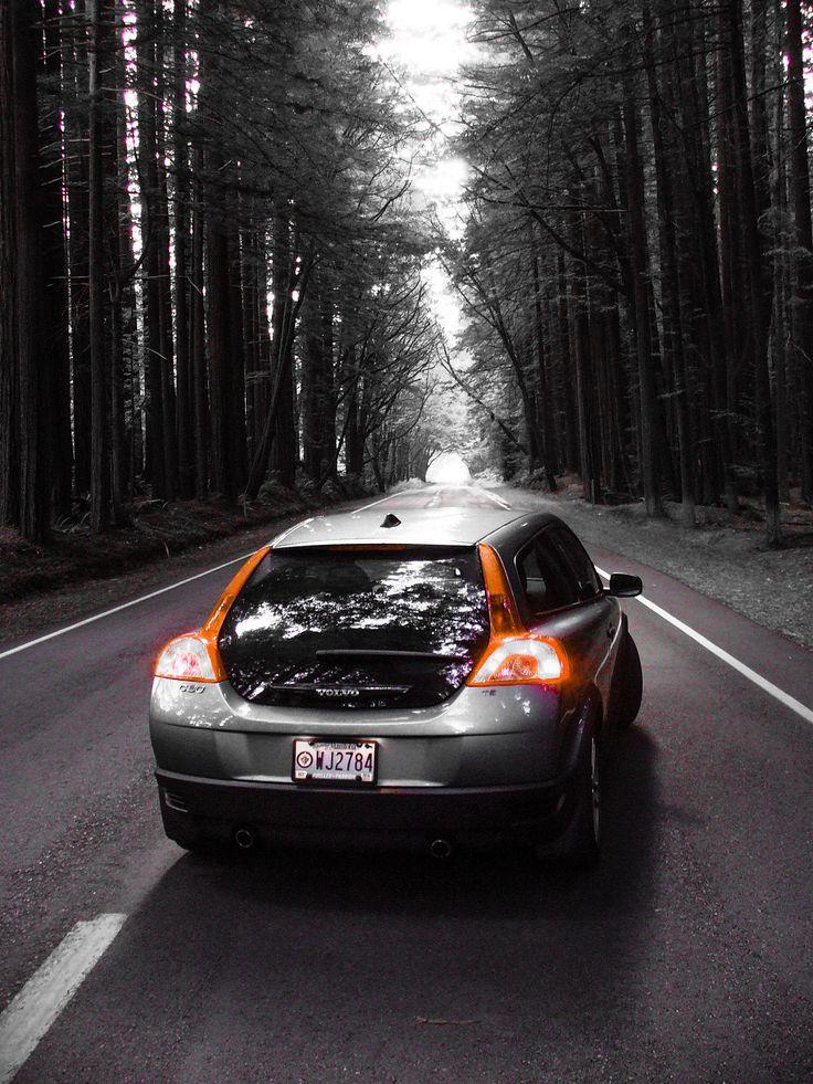 Volvo C30 driving through the California redwoods.