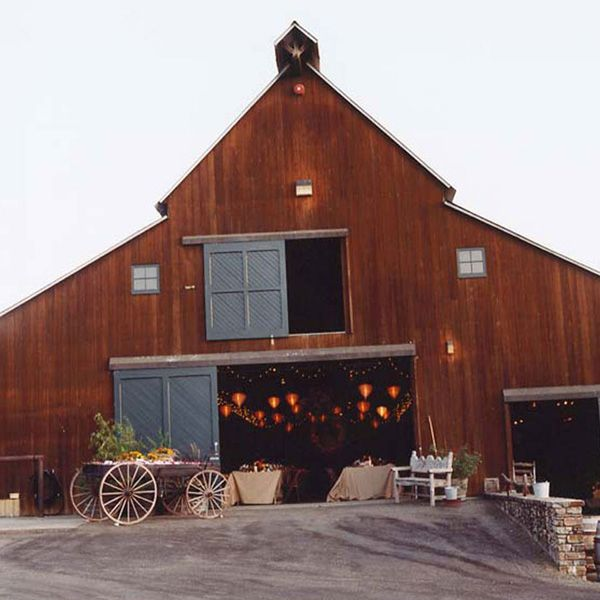 Country Rustic Barn Weddings: 25+ Best Ideas About Fall Wedding Mums On Pinterest