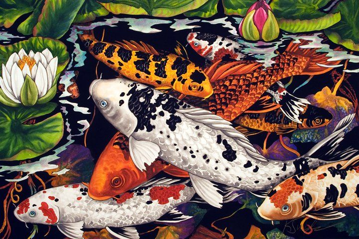 17 best images about watercolor on pinterest david for Koi art nature