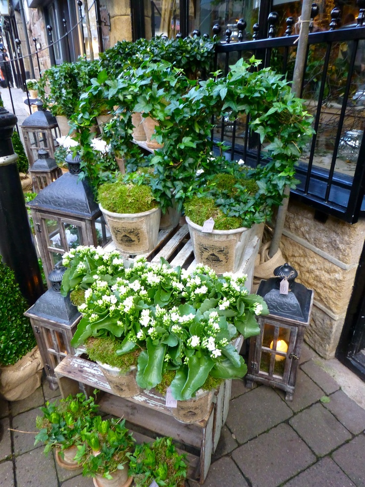 White flowers and scented candles at Caine of Harrogate...