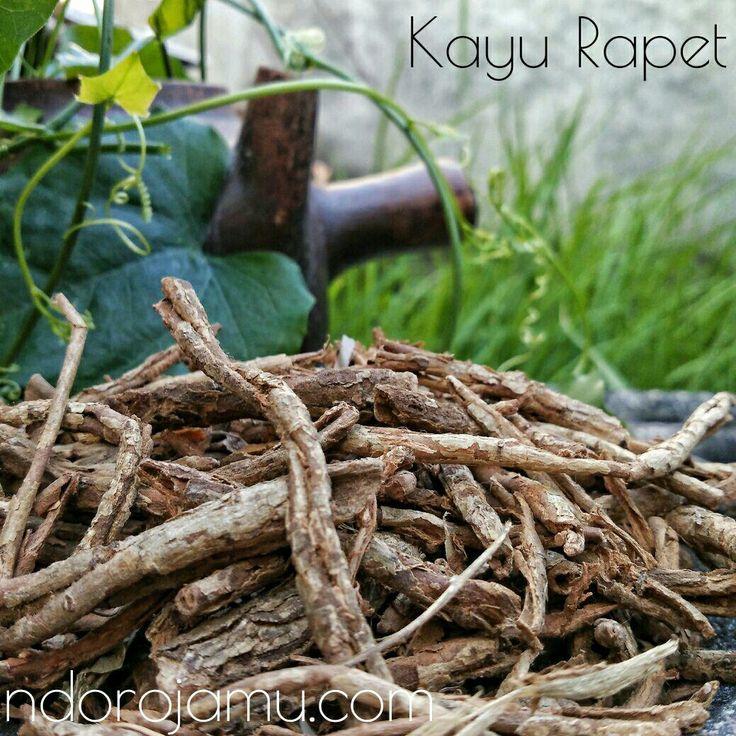 Kayu Rapet