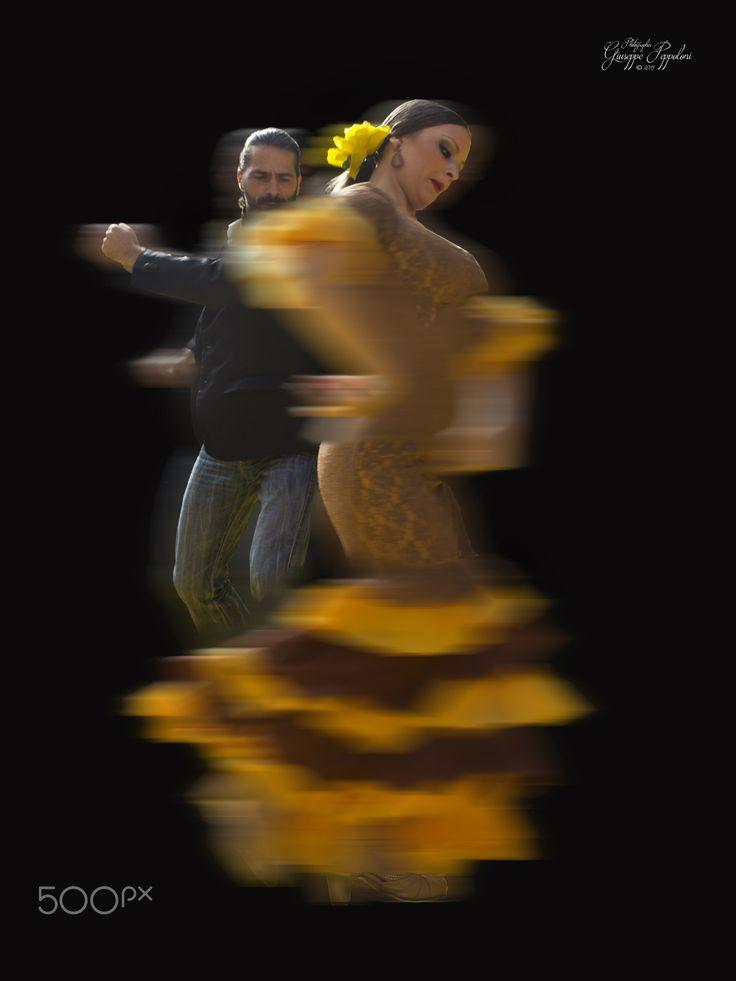 Il flamenco by Giuseppe  Peppoloni on 500px