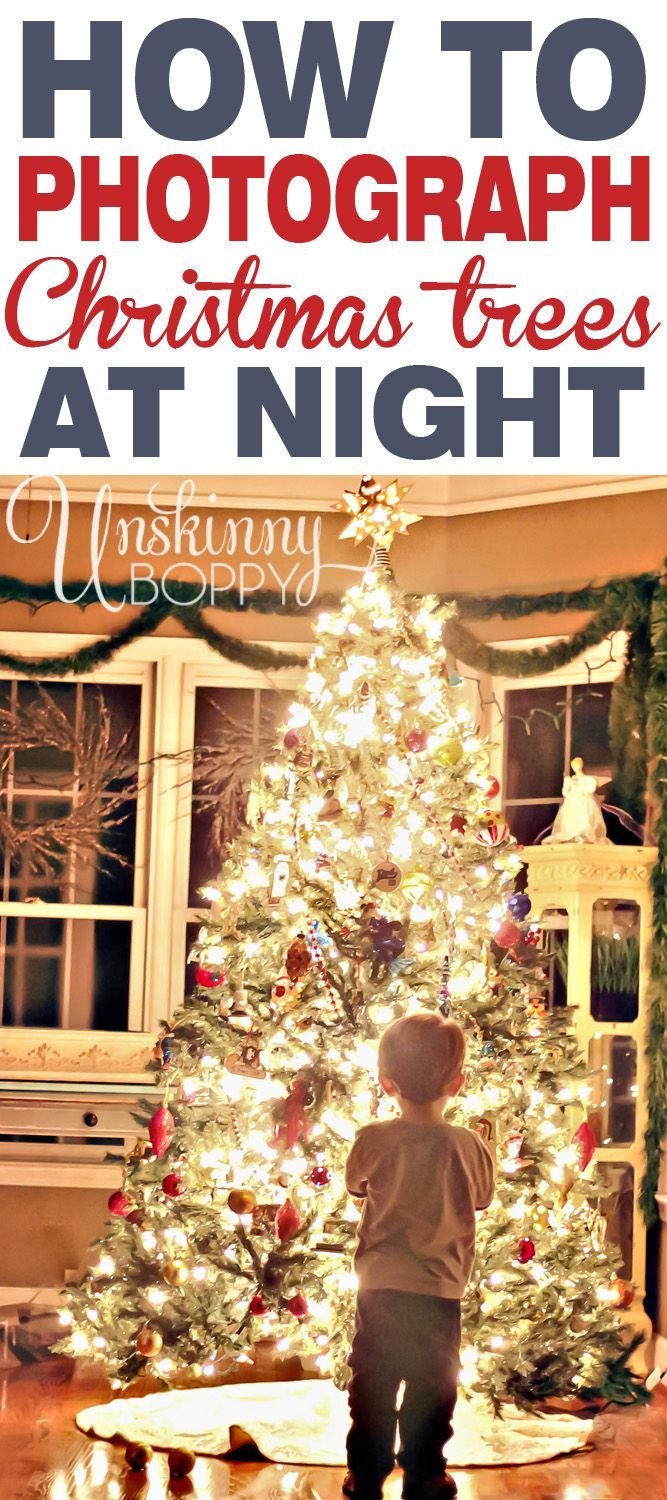 how to photograph christmas tree at night