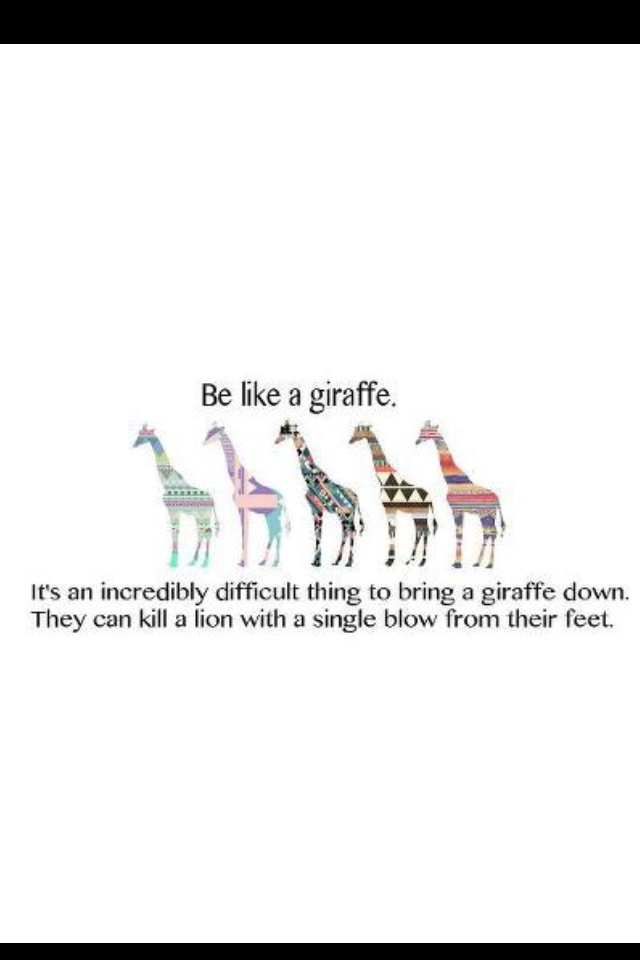 Giraffe quote <3                                                                                                                                                      More