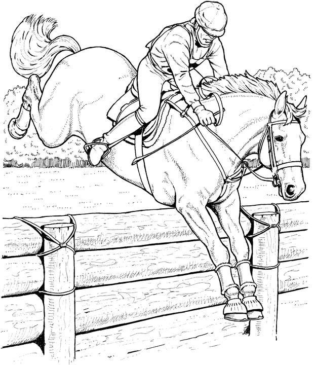 Realistic Horse Coloring Pages | Free Horse Coloring Pages