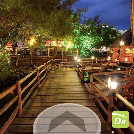 Restaurante Thai  Business View Google Datalogyx