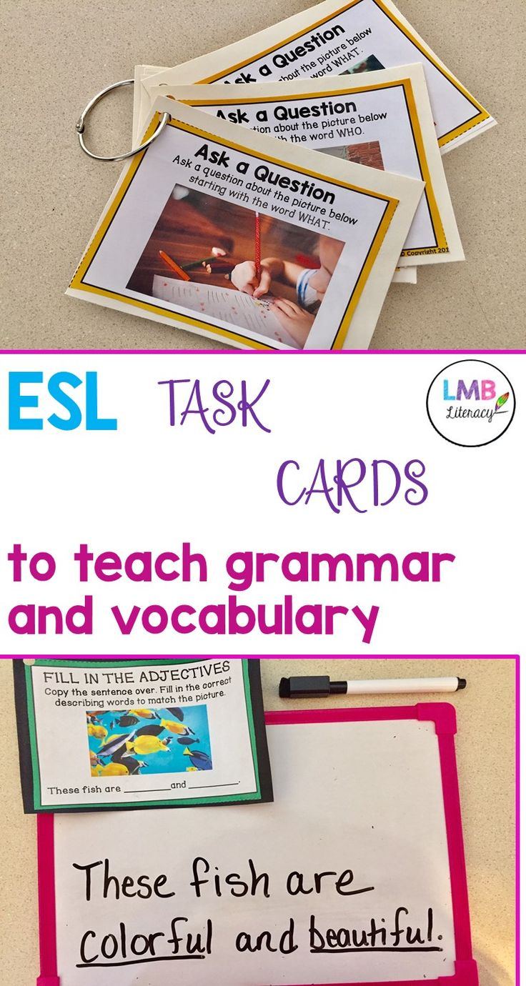 Help your beginner ESL students in vocabulary and writing with these ESL task cards! Each set uses real images and prompts to encourage ESL students to make real-life connections in a fun and engaging way!