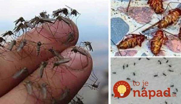 Spreje proti komárom nájdeme v každom obchode, ale tiež je známe, že obsahujú aj množstvo látok, ktoré ľudskému telu škodia.