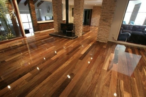 Spotted Gum (Corymbia maculata) is an Australian eucalyptus that's used as flooring all over Austalasia. It shows up from time to time elsewhere in the world and it's absolutely stunning. It's very hard, very durable and easy to work with.