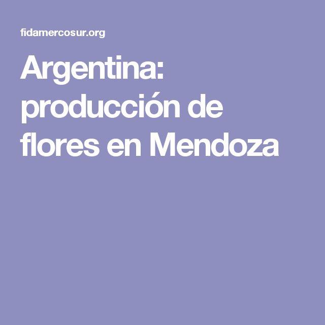 Argentina: producción de flores en Mendoza