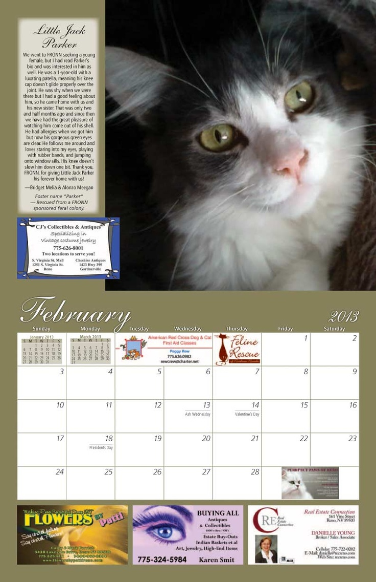 Calendar Design Cost : Best cat rescue calendars images on pinterest calendar