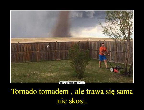 Tornado tornadem , ale trawa się sama nie skosi. –