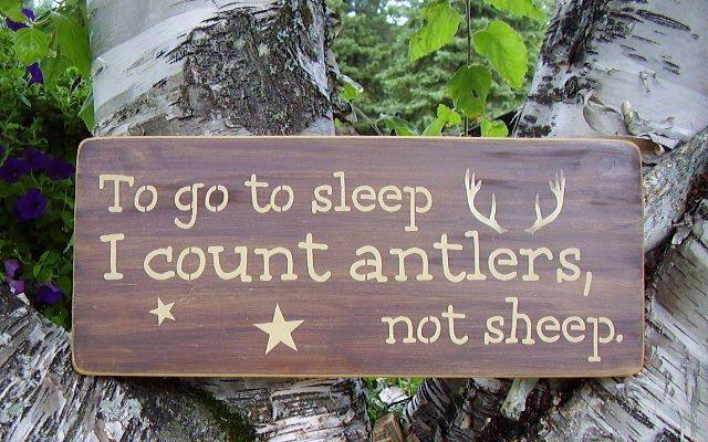 To go to sleep I count antlers, not sheep sign. $24.00, via Etsy.