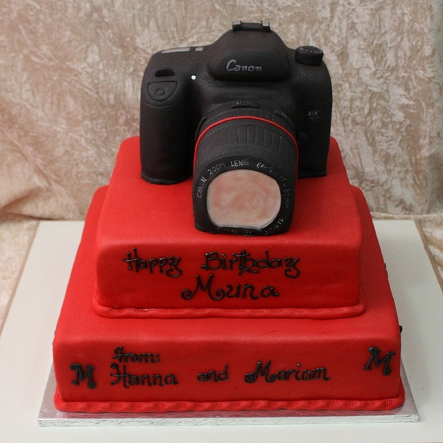 17 Best images about cake on Pinterest Vintage suitcases, Birthday cakes and Canon cameras