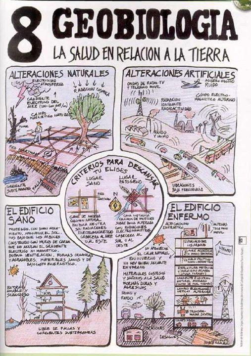 Geobiologia. La salud en relación a la tierra