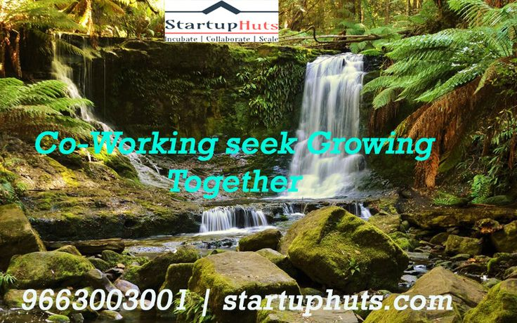 Startup Business Top CoWorking, Plug and Play office space Our members get the benefit of common business services through our partners at the discounted rate come once Get More Infornation. 9663003001