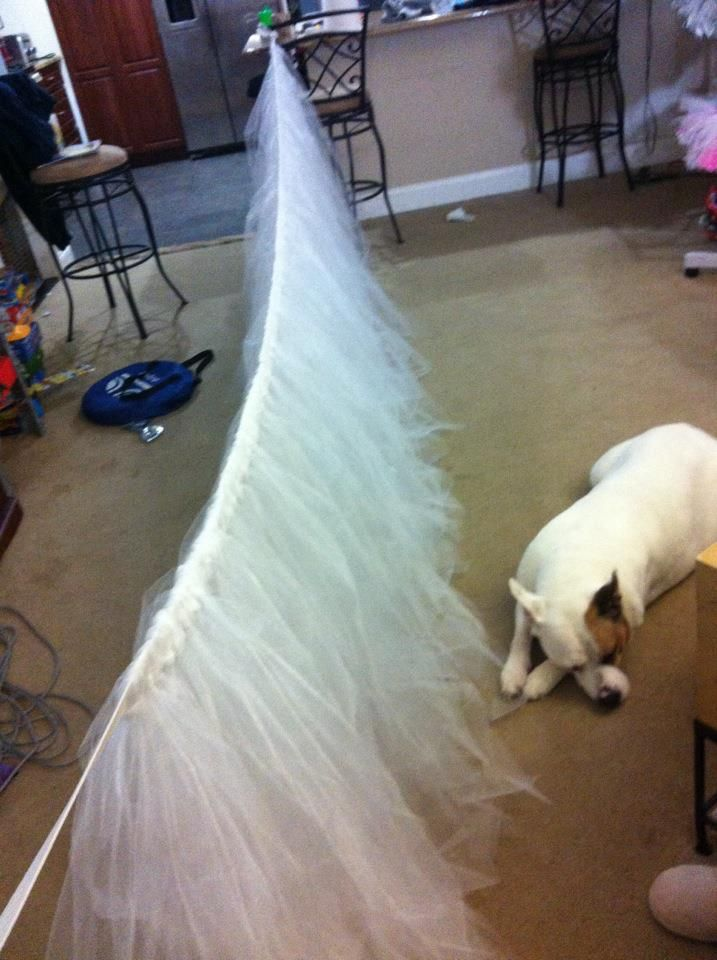 "White Tutu Table Skirt for a 60"" round table.  www.facebook.com/lilmisstutu.bycj"