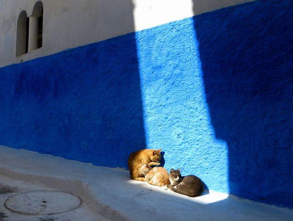 Warm Morrocan Sun