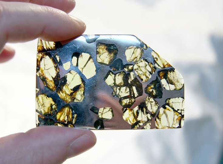 Esquel pallasite from Argentina, meteorite with large olivine crystals.