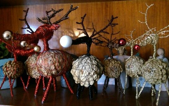 Reindeers a la Rudolph