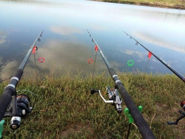 Impresii de la pescuit – Fundulea 6