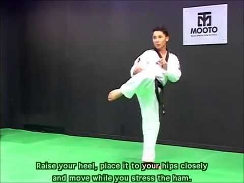 Taekwondo Combat Tutorial: Kick Strengthen Training
