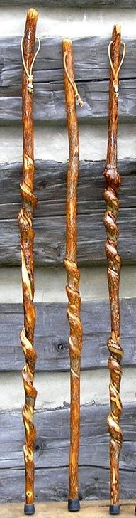 Three Curled Walking Sticks