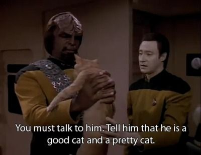 One of the best scenes in TNG. Worf watching Spot.