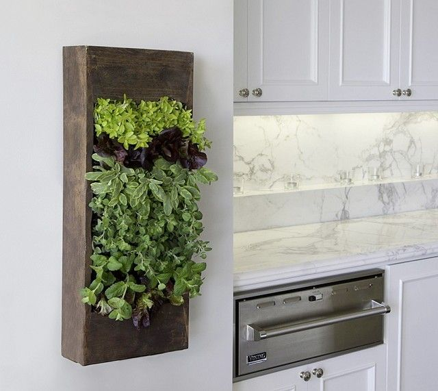 Genius idea! I want my herbs to be stylish just like that! You can find it here: BrightGreen.