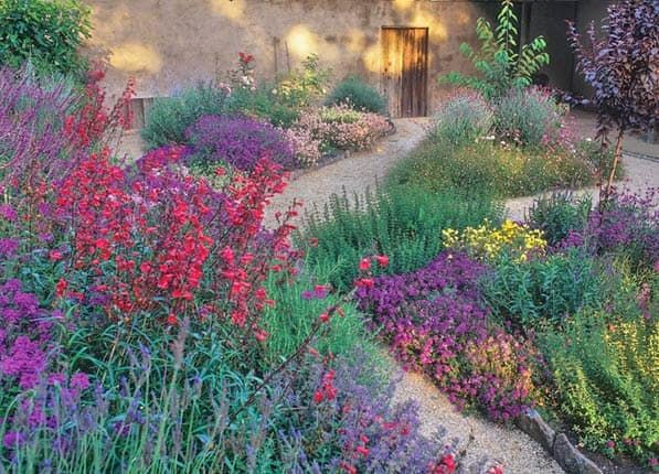 best 25 california garden ideas on pinterest drought tolerant. Interior Design Ideas. Home Design Ideas