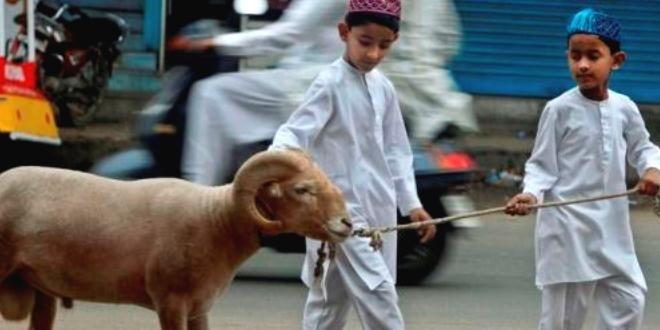 Edupost.id- Seluruh umat Islam saat ini tengah merayakan hari raya Idul Adha…