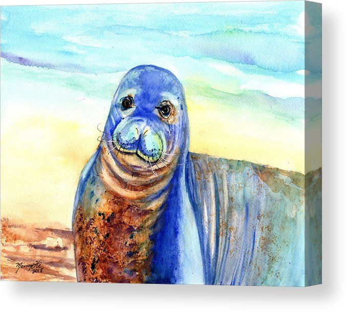 Seal Canvas Print Featuring The Painting Hawaiian Monk Seal By