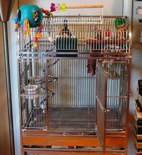 Bird cages conure cage setups discount parrot supplies for Cheap c c cages