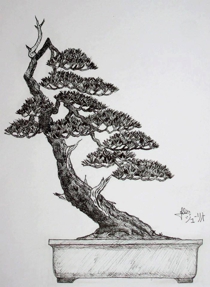 Les 228 meilleures images du tableau bonsai desenhos sur - Dessin bonzai ...