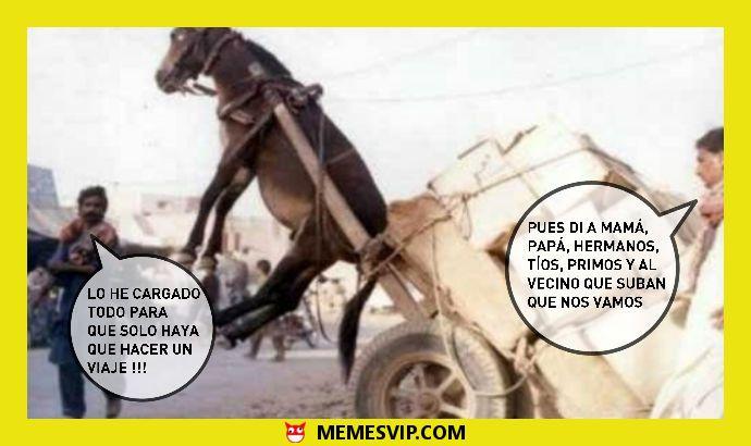 Meme nunca es suficiente #meme #momo #chiste #españa #mexico #venezuela #ecuador #colombia #2017 #crash #enespañol #memesenespañol #carro #asno #burro #memes #momos #chile #argentina #jaimito #2017 #mudanza
