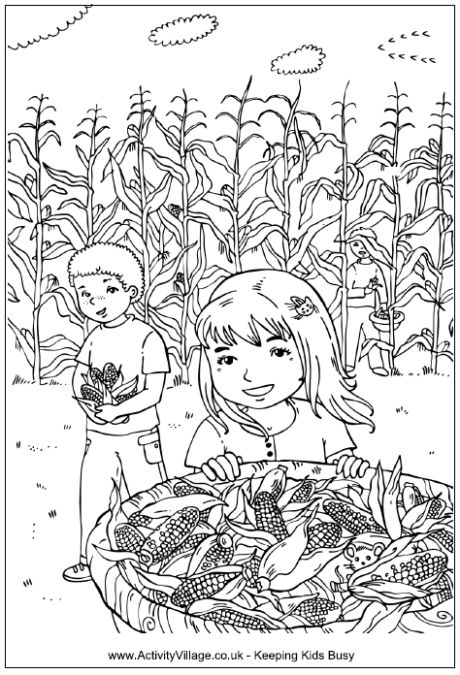 Picking corn coloring page, children in a corn field